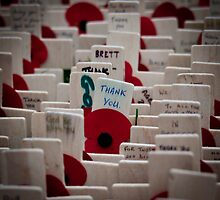 Remembrance Day - Crosses at Westminster Abbey   by Jonathan Marsh