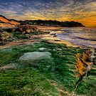 Pebbly Beach NSW by Ian English
