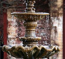 The Water Fountain by warmonger62