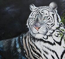 Baroda the Royal white Tiger by IlonaT