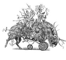 Bullock Amazons; leaving the comfort zone by Patina Vaz Dias