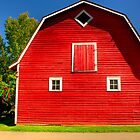The Big Red Barn by Michelle Burton