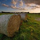 Bales at Sunset by Andrew Leighton