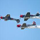 Aerostars YAK-52 TW Inverted Flight by Anthony Roma