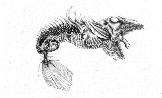 larvae stage 2; thick tongued fish mauler by Patina Vaz Dias