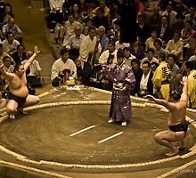 Sumo Tournament - September 2010 by Drofidits