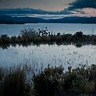 Pond over the Huon River by Mik Efford