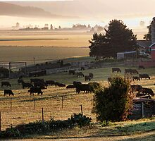 Skagit Panorama by Mike  Kinney