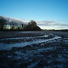Frost - A Winter Countryside Field by Sleapy