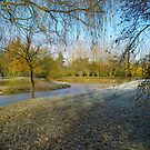 Frozen Lake - A Country Manor Lake by Sleapy