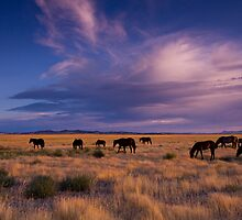 Wide Open Spaces by Kent Keller