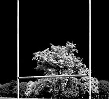 GAA Goalposts in the Phoenix Park, Dublin by Dave  Kennedy