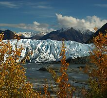 Trail With A View (Matanuska Glacier) by Rick & Deb Larson