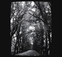 Keep to the Path by Kitsmumma