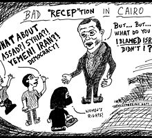 Bad RECEPtion in Cairo by bubbleicious