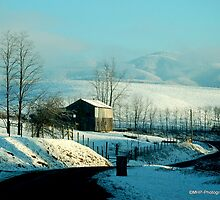 Winter On Virginia Roads by Mechelep