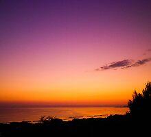 purples by BellatrixBlack