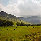 Langdale Valley by John Hare