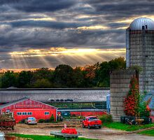 Sunshine Dairy Farm by Monica M. Scanlan