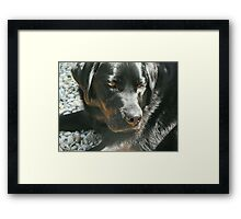 A Picture of Health Framed Print