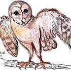 Tyto alba (Barn owl) / Nonnetjie-uil by Elizabeth Kendall