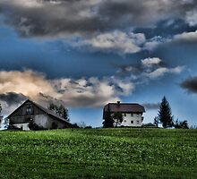 Farm Austria by Sabine Jacobs
