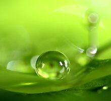 Pea Green by Sharon Johnstone