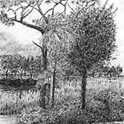 Pine Tree by W. H. Dietrich
