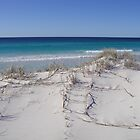 Friendly Beaches, Freycinet Peninsular by Wendy Dyer