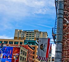 Downtown San Francisco by mercouri