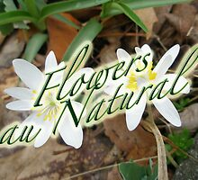 Calendar - Flowers au Natural by MotherNature