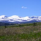 Snow in the Bighorns by thelonewolffft2