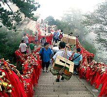 Padlocks, Hua Shan, Shaanxi by DaveLambert