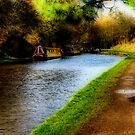 Audlem Canal - Ortonised View by Aggpup