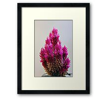 Earth laughs in flowers. Framed Print