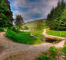 Down The Path or Over The Bridge? by John Hare
