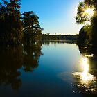 Early Autumn Shimmer on the Bayou by Jessica Tamler