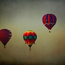 Hot Air Balloons and a Sinister Sky by Lisa Holmgreen