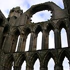 Elgin Cathedral, Scotland by lezvee