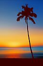Palm Tree Beach Sunset by David Alexander Elder