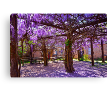 Colours of spring.. Canvas Print