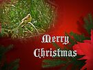 Merry Christmas Card - Female Cardinal Songbird by MotherNature
