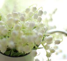 Whiteness by Elena Pezzini