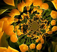 Dance of the Yellow Tulips by Gregory J Summers