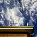 Roof by morealtitude