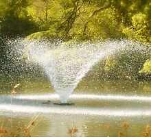 Duck in the fountain by jsflysrc
