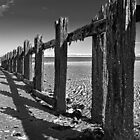 Old Groyne  by Geoff Carpenter
