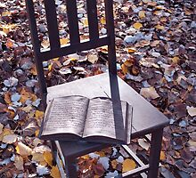Chair - Hepburn Springs  by ignea0303