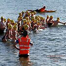 Kingscliff Triathlon 2011 Swim leg C255 by Gavin Lardner
