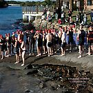 Kingscliff Triathlon 2011 Swim leg C276 by Gavin Lardner